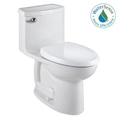 American Standard Toilet and Bidet